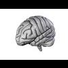 00 34 56 757 brain18 4