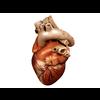 00 37 43 689 heart 02 4