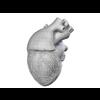 00 37 46 836 heart 13 4