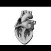 00 37 48 821 heart 22 4