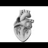 00 37 49 466 heart 27 4