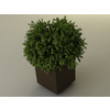 00 40 05 485 planterbox 4