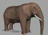Elephant 2.0.0 for Maya