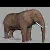 00 44 12 683 elephant wip 006 4