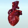 00 44 31 414 heart cam fr75 01 4