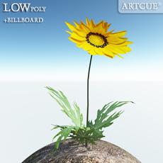 flower_002 3D Model
