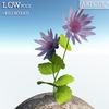 00 45 40 206 flower 007 main 4