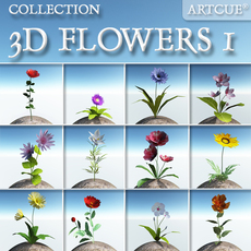 FLOWER COLLECTION 01 3D Model