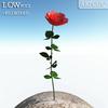 00 46 12 884 flower 001 main 4