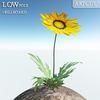 00 46 12 961 flower 002 main 4
