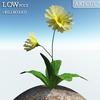 00 46 13 109 flower 005 main 4