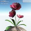 00 46 13 381 flower 013 main 4