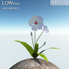 00 46 13 495 flower 014 main 4