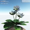 00 47 40 307 flower 021 main 4