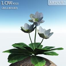 flower 021 3D Model