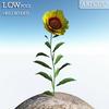 00 47 40 848 flower 016 main 4