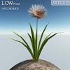 00 47 41 300 flower 022 main 4