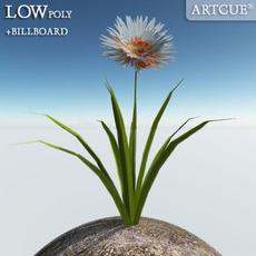 flower 022 3D Model