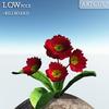 00 47 54 411 flower 024 main 4