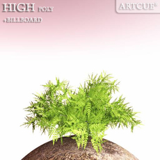 shrub 009 3D Model