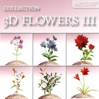 FLOWER COLLECTION 03 3D Model