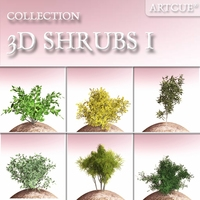 SHRUBS COLLECTION 01 3D Model