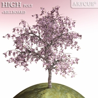 tree 005 blooming 3D Model