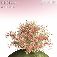 shrub 013 3D Model
