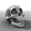 00 52 30 296 skull0 4