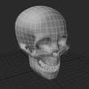 00 52 30 460 skull1 4