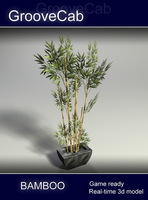 Bamboo Plant in Pot - Low Poly 3D Model