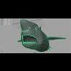 00 55 54 425 shark persp 4