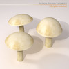 00 57 26 268 mushrooms2 4