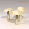 00 57 26 85 mushrooms5 4