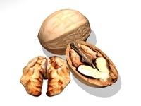 Walnut 3D Model