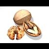 00 58 53 944 walnut1 4