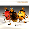00 59 47 515 ladybug2 4