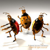 00 59 47 563 ladybug6 4