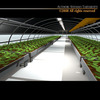 00 59 47 968 greenhouse2 4