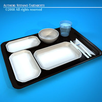 Tray food 3D Model