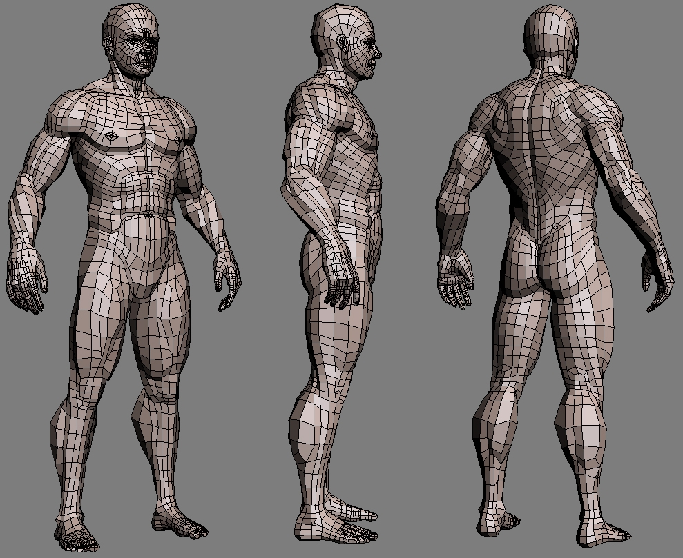 Wire Maya Human Body Center And A Road Bike Http Enwikipediaorg Wiki Listofbicycleparts Realistic Muscled Male Textured 3d Model Rh Highend3d Com Jesse James Tools