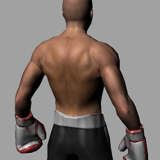 lowpoly boxer 3D Model