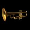 01 04 07 701 trumpet 001 maya rdr 4