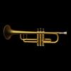 01 04 07 778 trumpet 002 maya rdr 4