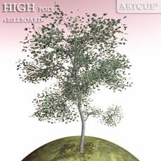 tree 012 3D Model
