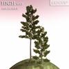 01 04 54 109 tree 016 main 4