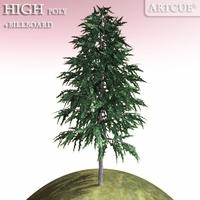 tree 017 fir 3D Model