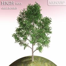 tree 018 3D Model