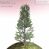 tree 020 3D Model