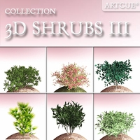 shrub collection 03 3D Model